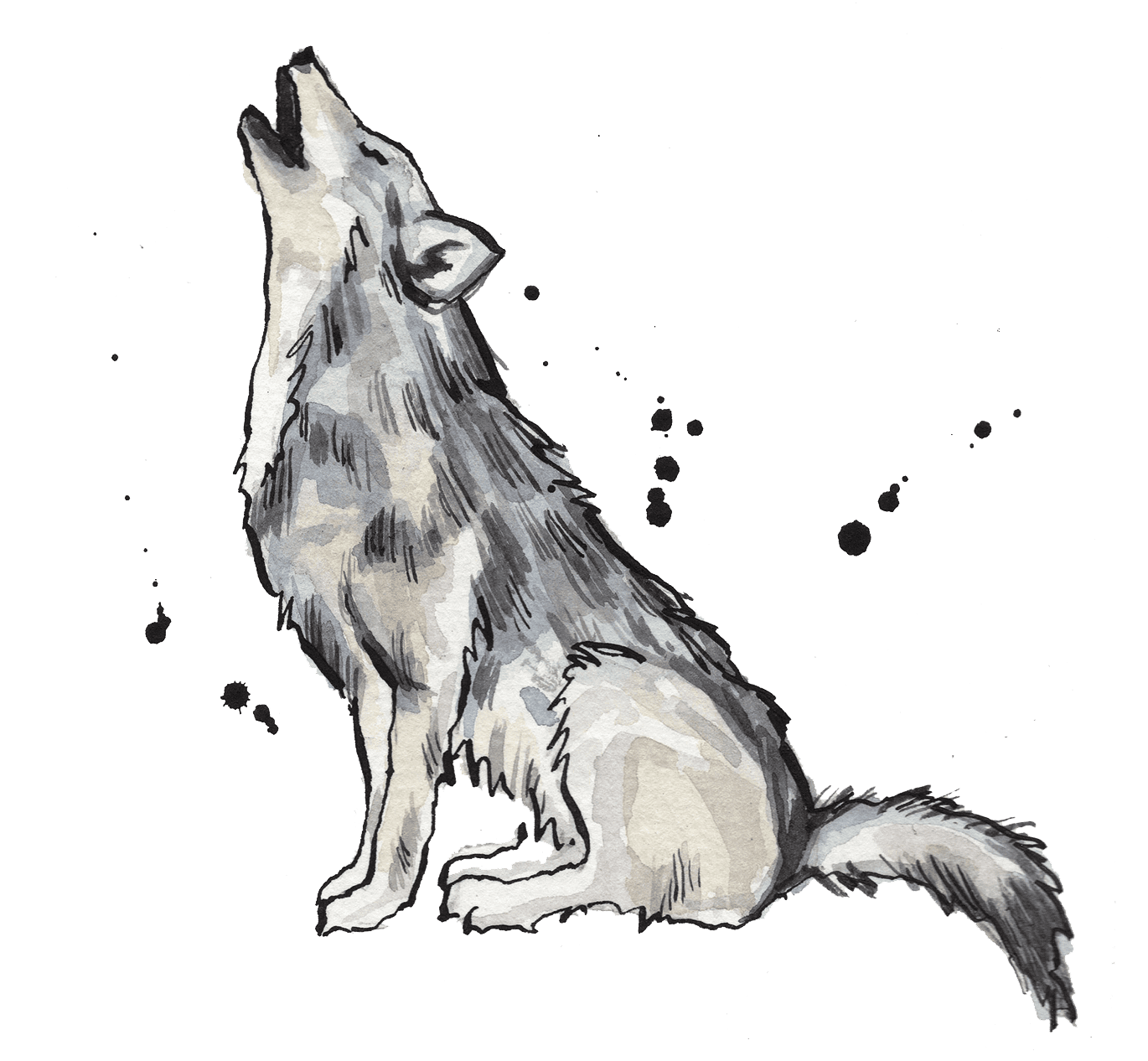 Illustrated wolf howling
