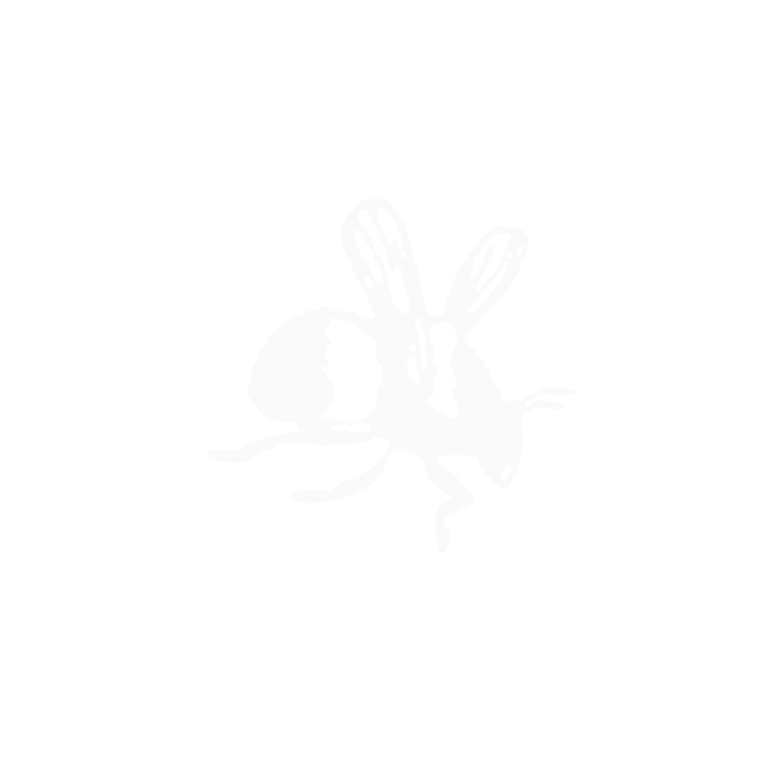 Engraved Time Flies Bee Signet Ring - Silver - UK N