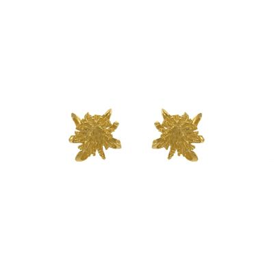 Teasel Stud Earrings Product Photo