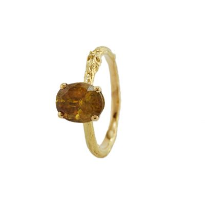 Twiggy Titanite Oval Ring Product Photo